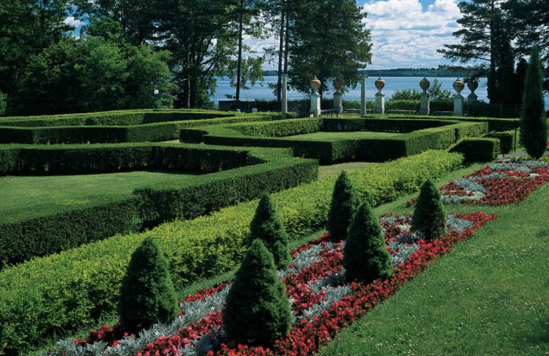 Hedge maze at Geneva on the Lake.