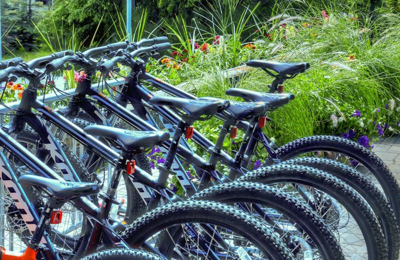 Bikes at Banff Caribou Lodge & Spa.