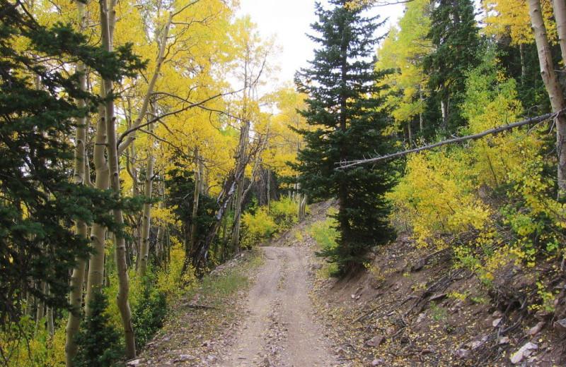 ATV trail at Big Rock Candy Mountain Resort.