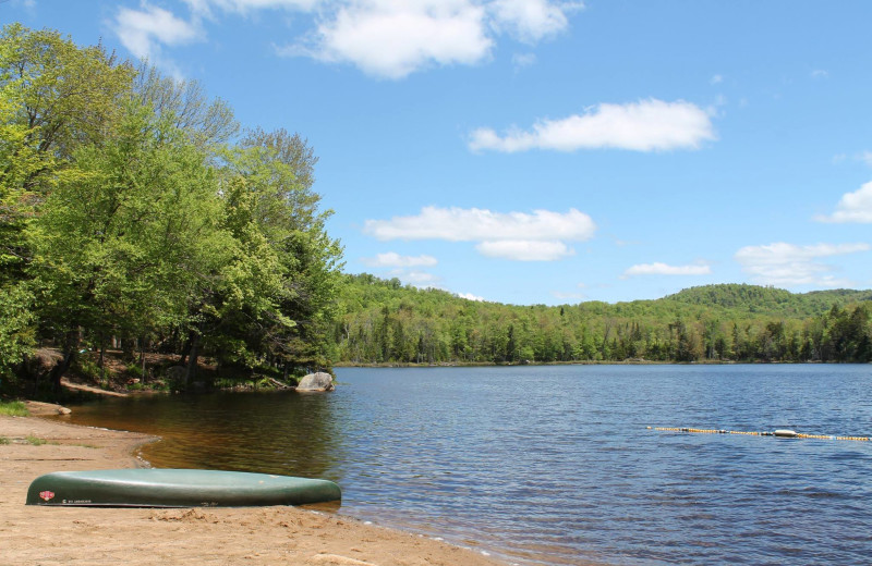 The beach at Old Forge Camping Resort.