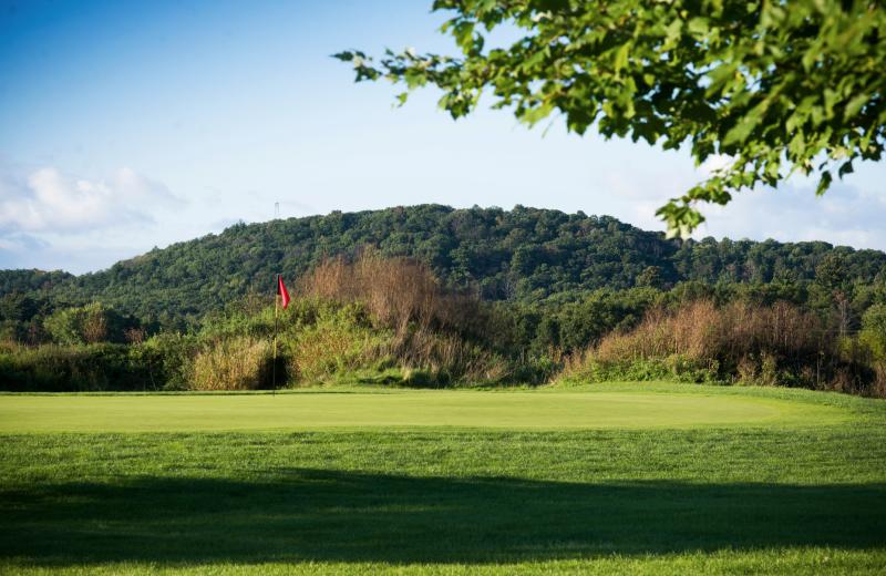 Golf at Chula Vista Resort.