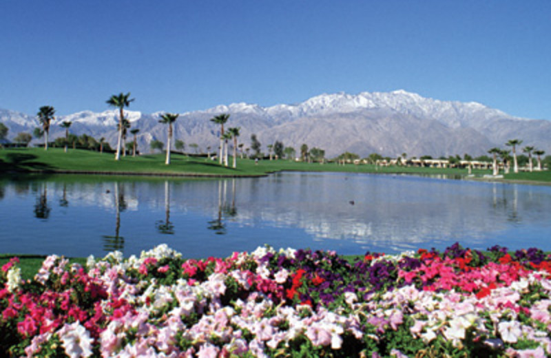Golf course at Worldmark At Palm Springs.