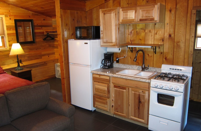 Cabin kitchen at Amberwood.