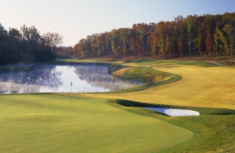 Golf course near Chateau on the Lake.