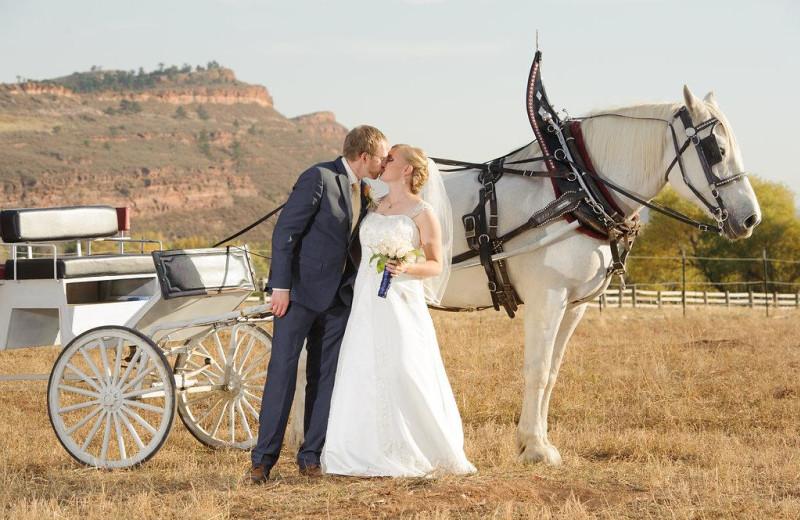 Wedding at  Sylvan Dale Guest Ranch.