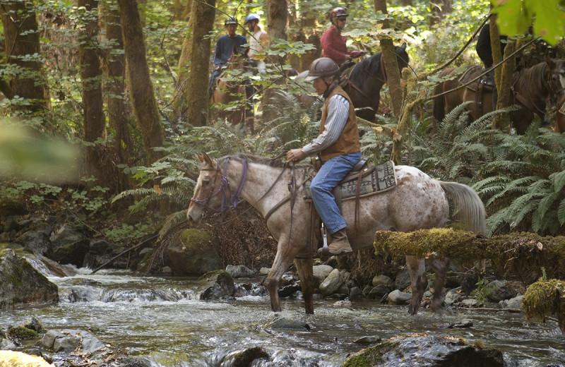 Horseback riding through creek at Marble Mountain Guest Ranch.