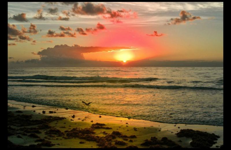 Sunset at Shell Island Resort.