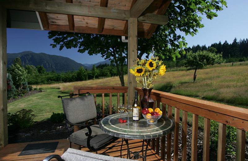 Front Patio at  Carson Ridge Cabins