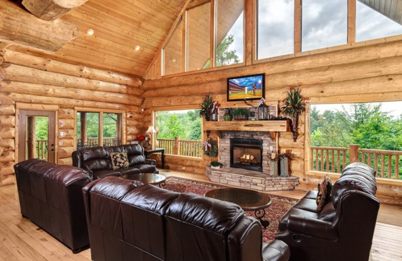 Rental living room at Stony Brook Cabins, LLC.