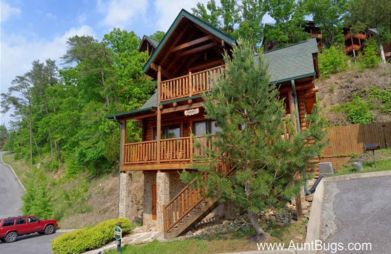 Pigeon Forge Vacation Rentals Cabin Poolside Retreat 221 Aunt