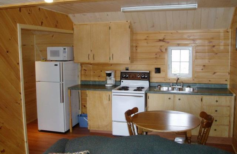 Cabin kitchen at Pleasant Cove Resort.