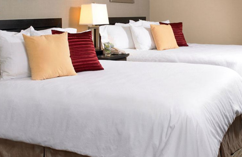 Guest Room at INN at Wilmington