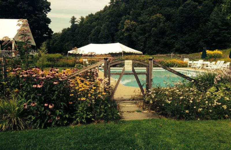 Outdoor pool at Three Stallion Inn.