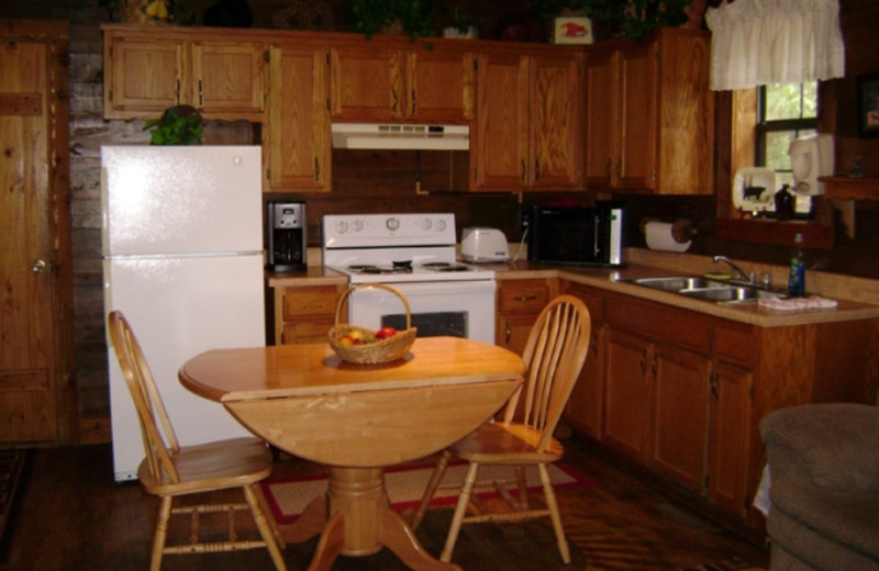 Cabin kitchen at Pine Lodge Cabins & Suites.