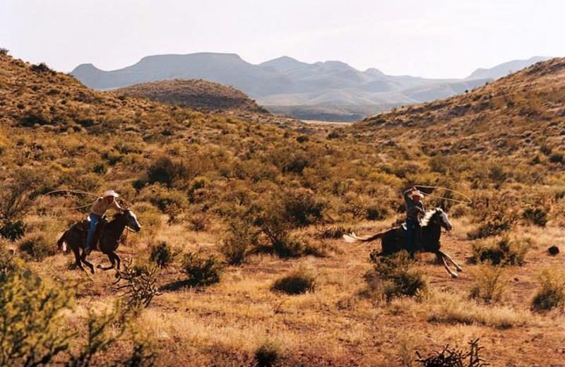 Horseback riding at Cibolo Creek Ranch.