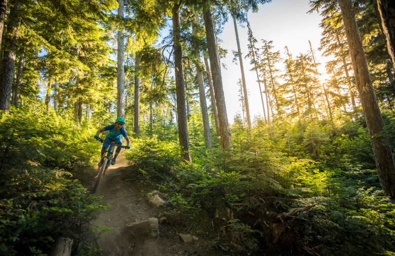 Biking at Whistler Breaks.
