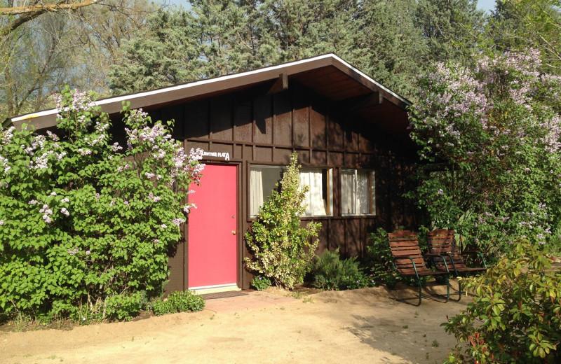 Comfortable mountain cabins at Rankin Ranch.