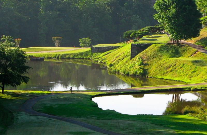 Golf near Little Bear Rentals.