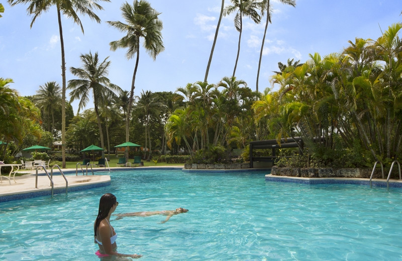 Outdoor pool at Glitter Bay.