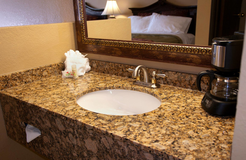 Guest bathroom at The Branson Stone Castle Hotel & Conference Center.