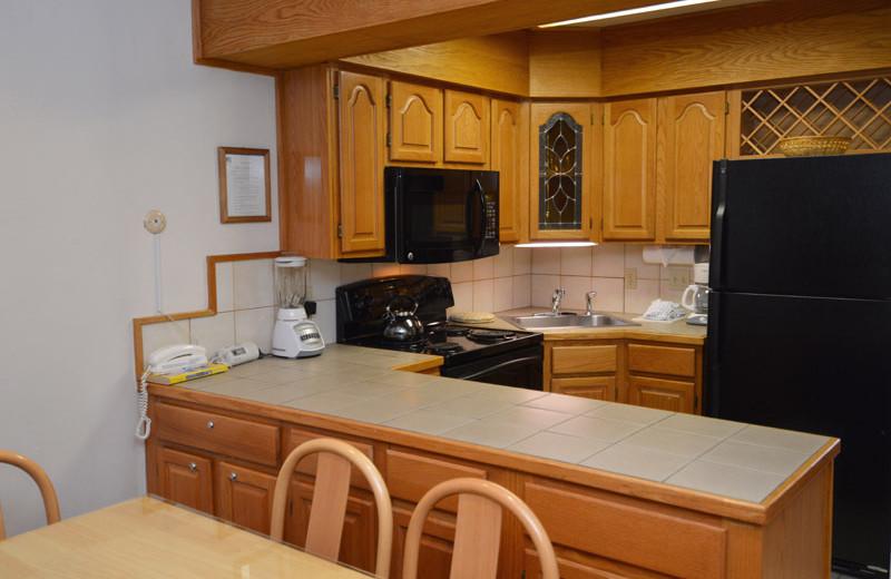 Rental kitchen at Frias Properties of Aspen - Alpenblick #11.
