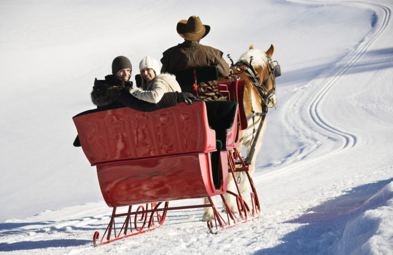 Sleigh ride at Elevation Accommodations.