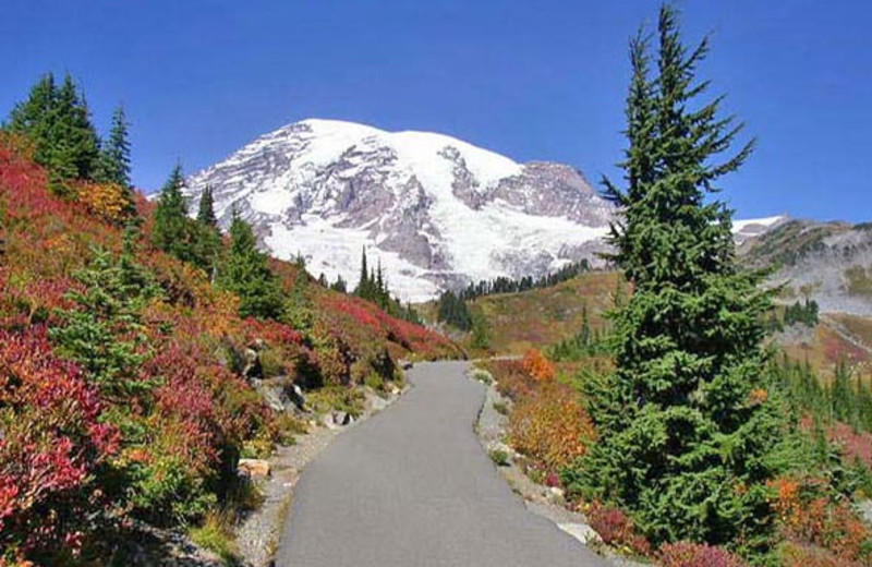 Mount Rainier at Stone Creek Lodge
