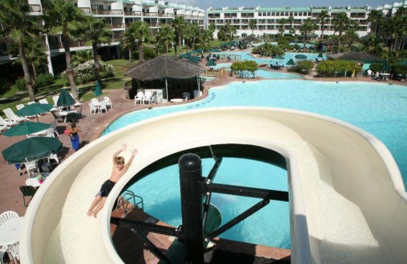 Water Slide at Port Royal Ocean Resort
