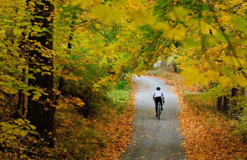 Biking at American Mountain Rentals.