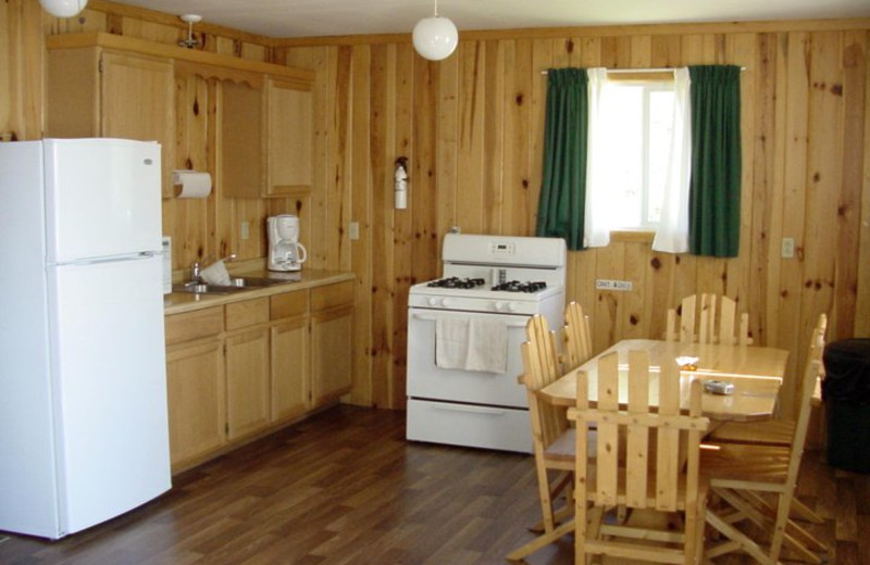 Cabin kitchen at Pipestone Point Resort.
