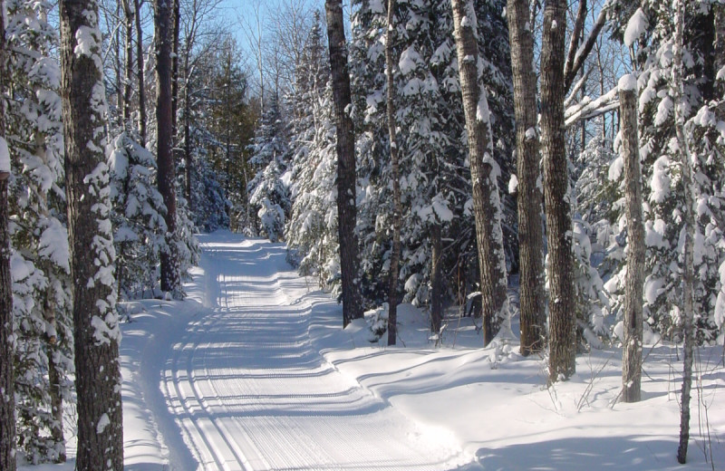Winter ski trail at Golden Eagle Lodge.