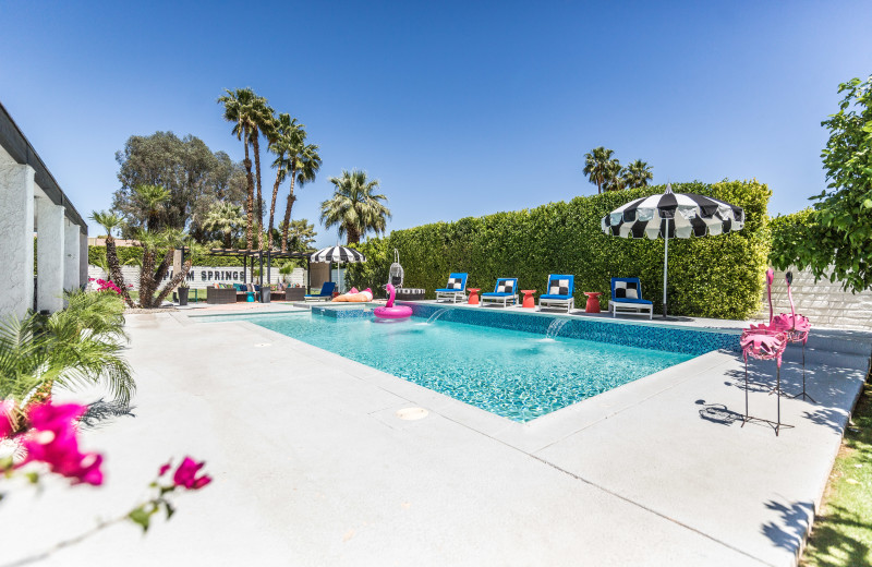 Rental pool at Altez Vacations - Palm Springs.