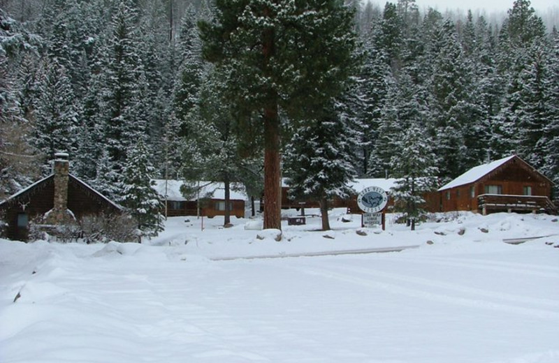 Winter time cabins at Lone Wolf Cabins and Getaway.