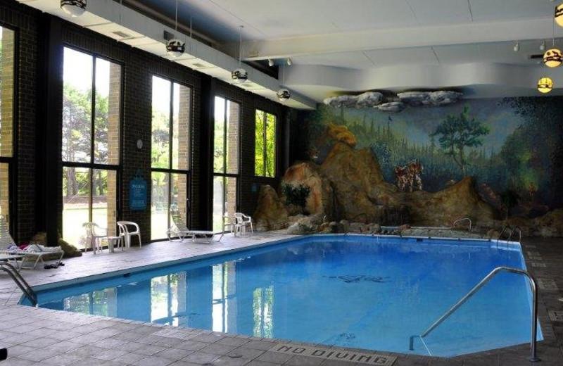 Indoor pool at Sawmill Creek Resort.