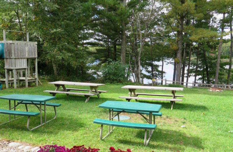 Picnic area at Sleeping Bear Resort.