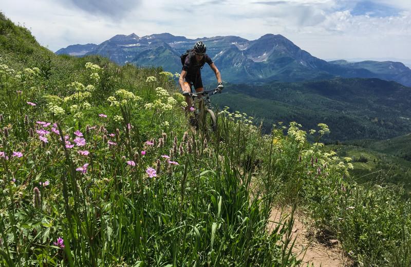 Biking at Canyon Services Vacation Rentals.