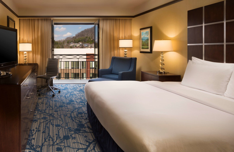 Guest room at Hilton Asheville Biltmore Park.