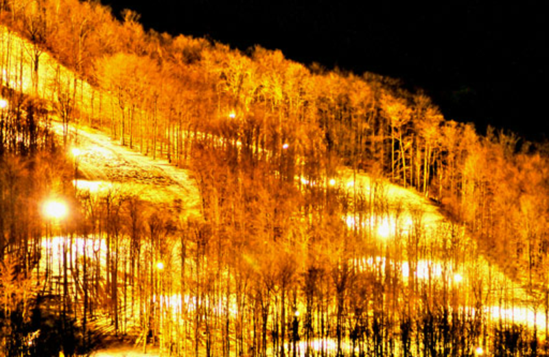 Skiing near Timberline Mountain-Access Properties.