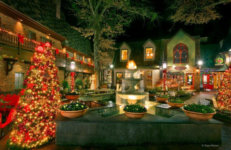 Holiday lights at Elk Springs Resort.