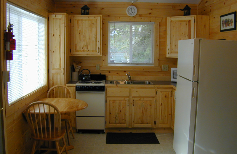 Cabin kitchen at Northern Lights Lodge & Resort.