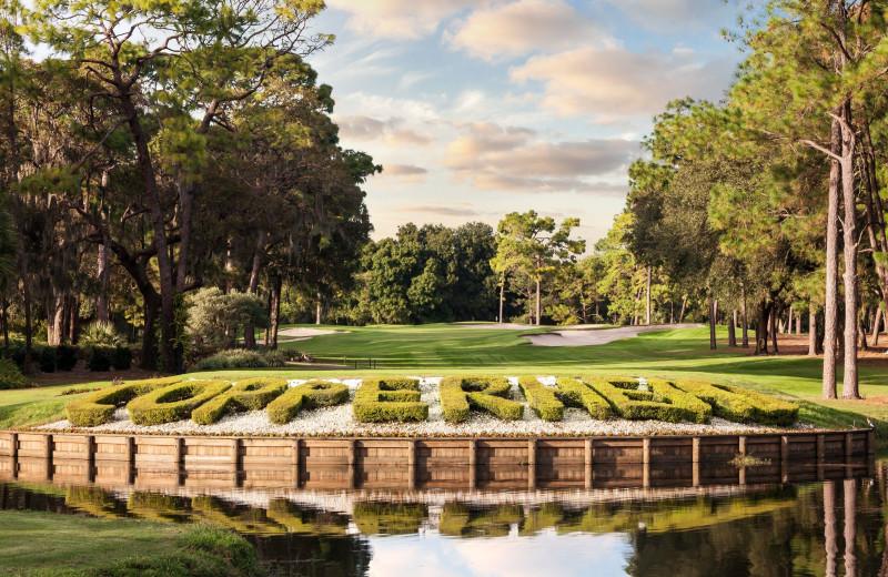Golf near Walker Vacation Rentals.