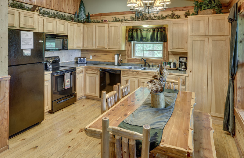 Cabin kitchen at Lake Forest Luxury Log Cabins.