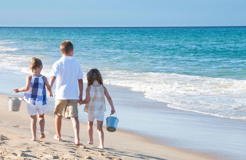 Beautiful beaches for you and your family to explore.