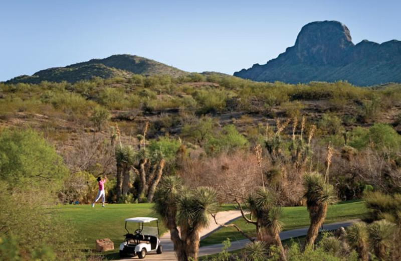 Golfing at Rancho De Los Caballeros.