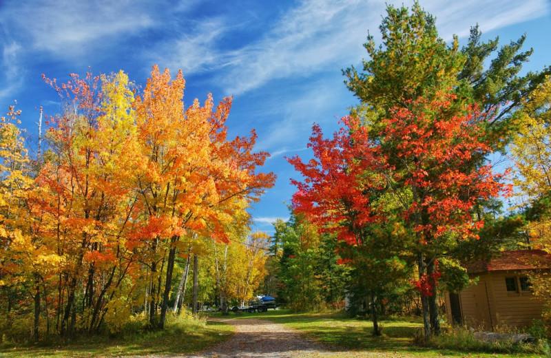 Fall colors at Moosehorn Resort.