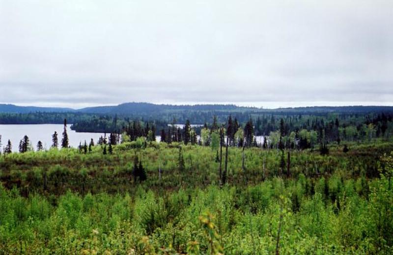 The Lake at Anishinabi Lodge