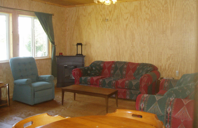 Cabin living room at Owls Nest Lodge.