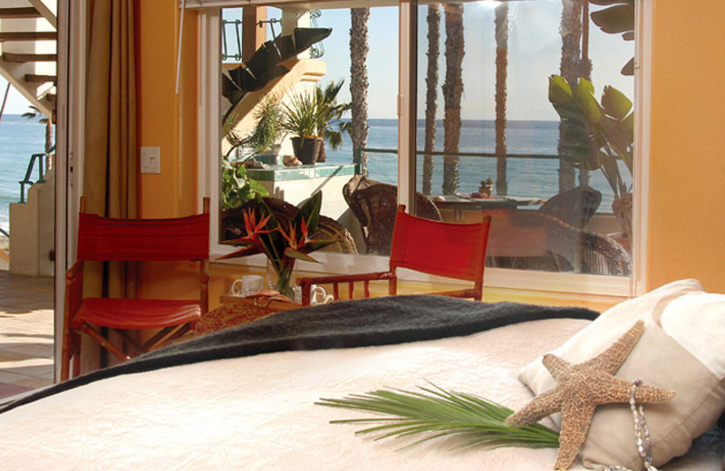 Guest room at Casa Tropicana Inn & Spa.
