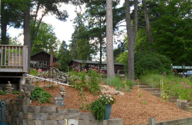 Cabins at Virgin Timber Resort.