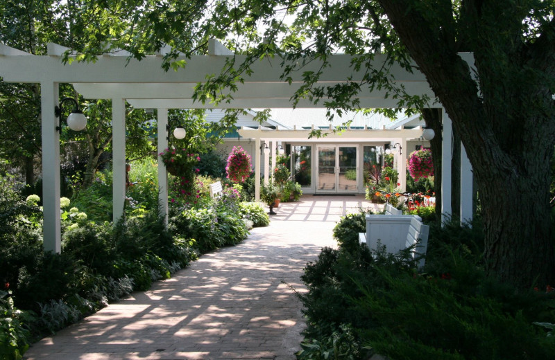 The garden at Elmhirst's Resort.
